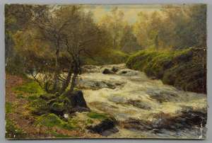 John Clayton Adams (British, 1840-1906), 'Falls of Garbh Allt Ballochbuie Forest', signed and dated 1895, stretcher inscribed verso, oil on canvas, unframed, 30.5cm x 46cm