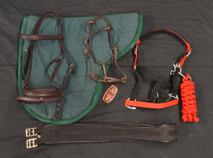 Mane Chance Charity Horse Tack Auction